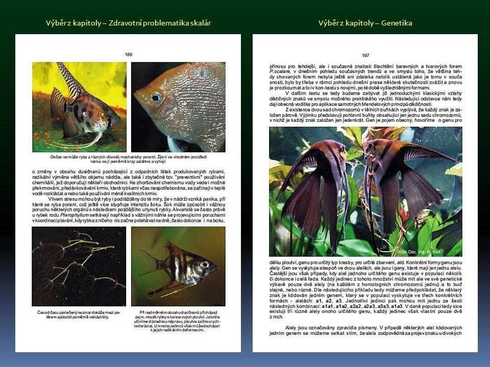 Výběr z podkapitoly – Historie chovatelských foremVýběr z podkapitoly – Chovatelé, profese i koníček