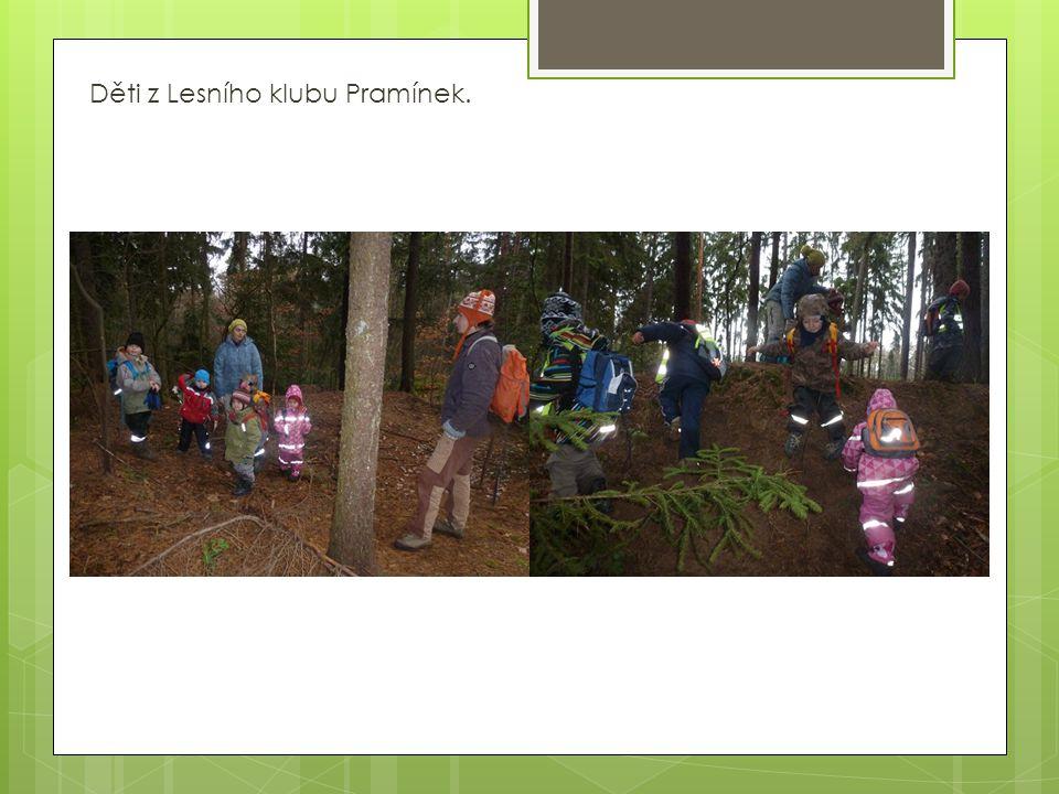 Děti z Lesního klubu Pramínek.
