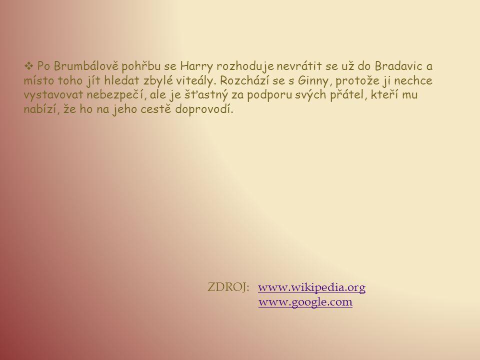  Po Brumbálově pohřbu se Harry rozhoduje nevrátit se už do Bradavic a místo toho jít hledat zbylé viteály. Rozchází se s Ginny, protože ji nechce vys
