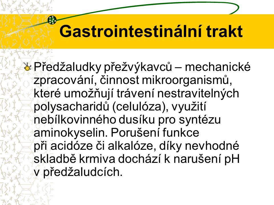 Gastrointestinální trakt Předžaludky přežvýkavců – mechanické zpracování, činnost mikroorganismů, které umožňují trávení nestravitelných polysacharidů