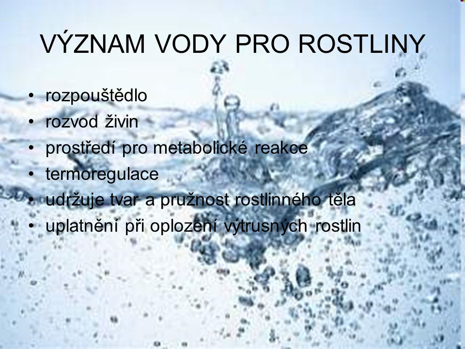 vodní režim = procesy vedení příjmu, vedení a výdeje vody Příjem vody a)nižší rostliny a vodní rostliny – celým povrchem těla b)vyšší rostliny – kořenový systém mimokořenový příjem - rosa, déšť, vzdušná vlhkost