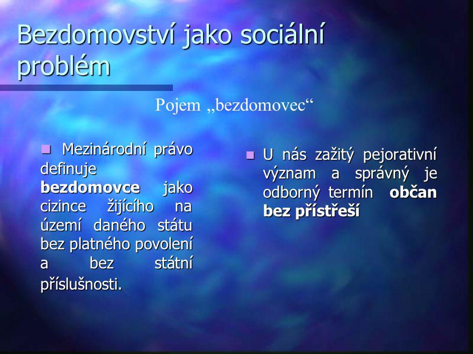 Další činnosti  Pracovní terapie  Sociálně – právní poradenství  Protidrogová sociální práce  Motivované vyhledávání TBC  Komunitní plánování sociálních služeb