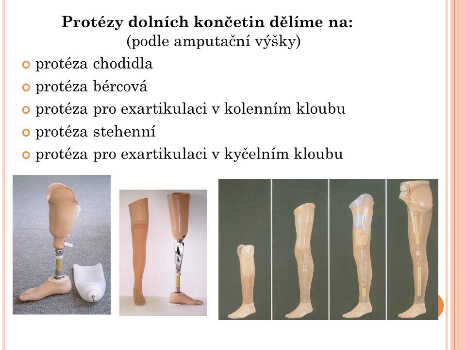 Protézy dolních končetin dělíme na: (podle amputační výšky) protéza chodidla protéza bércová protéza pro exartikulaci v kolenním kloubu protéza stehen