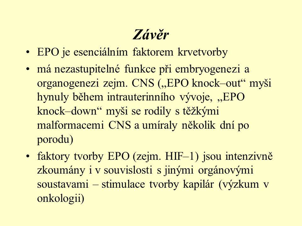 Závěr •tvorba faktorů i samotného EPO je závislá na hladině kyslíku v tkáních •geny pro tvorbu faktorů nebo EPO jsou trvale exprimovány jen v bkách intersticia ledvin a hepatocytech •hypoxie vyvolá přechodnou expresi EPO genu i v jiných orgánech (hlavně CNS) – EPO má protektivní vliv na orgány v krátkodobé hypoxii