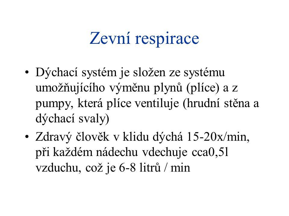 Zevní respirace •Dýchací systém je složen ze systému umožňujícího výměnu plynů (plíce) a z pumpy, která plíce ventiluje (hrudní stěna a dýchací svaly)