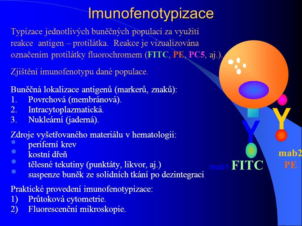 Imunofenotypizace Typizace jednotlivých buněčných populací za využití reakce antigen – protilátka. Reakce je vizualizována označením protilátky fluoro