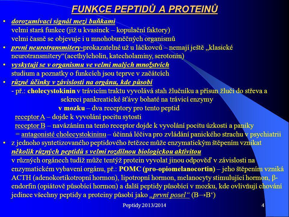Peptidy 2013/20145 Pro-opiomelamocortin (Pro-hormon, m.hm.