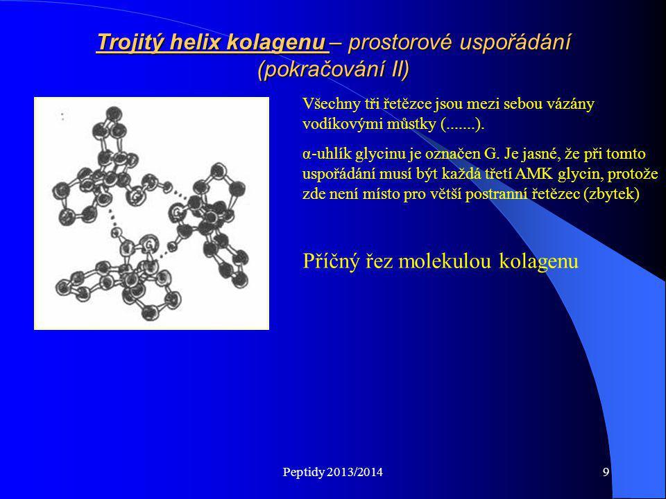 Peptidy 2013/20149 Trojitý helix kolagenu – prostorové uspořádání (pokračování II) Všechny tři řetězce jsou mezi sebou vázány vodíkovými můstky (.....