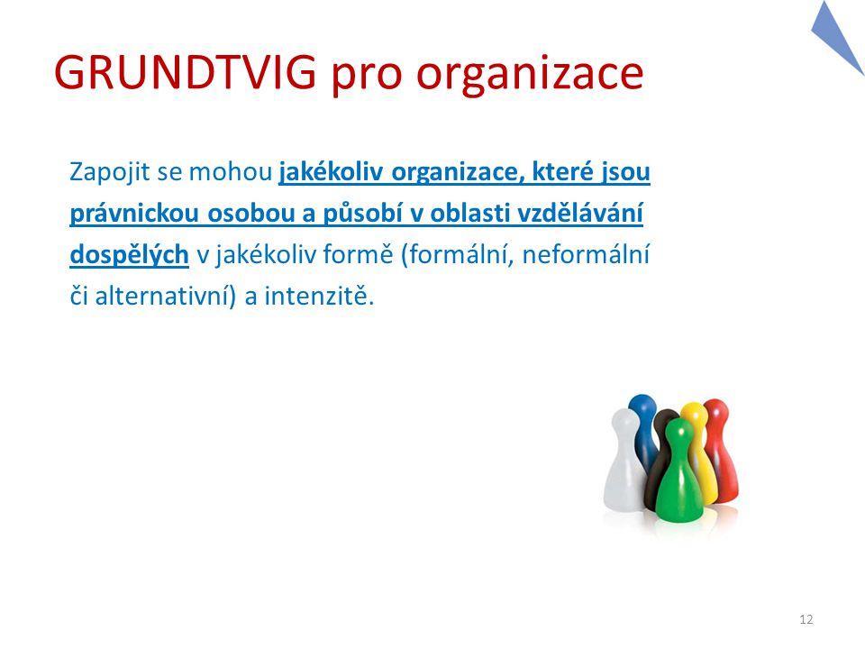 12 GRUNDTVIG pro organizace Zapojit se mohou jakékoliv organizace, které jsou právnickou osobou a působí v oblasti vzdělávání dospělých v jakékoliv fo