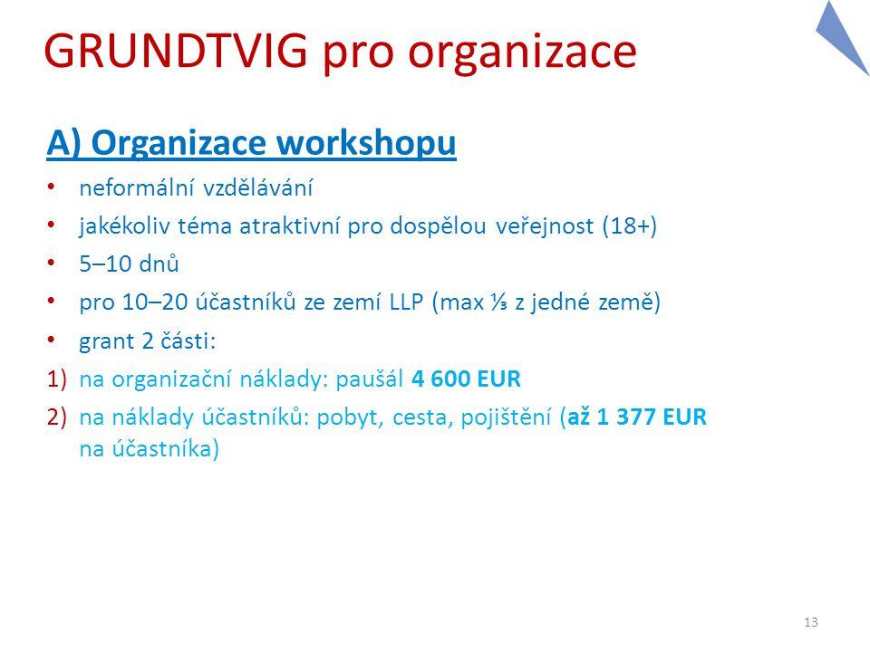 GRUNDTVIG pro organizace A) Organizace workshopu • neformální vzdělávání • jakékoliv téma atraktivní pro dospělou veřejnost (18+) • 5–10 dnů • pro 10–