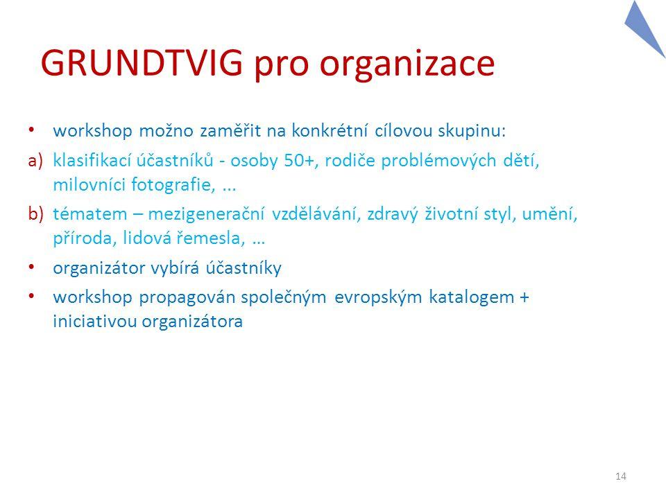 GRUNDTVIG pro organizace • workshop možno zaměřit na konkrétní cílovou skupinu: a)klasifikací účastníků - osoby 50+, rodiče problémových dětí, milovní