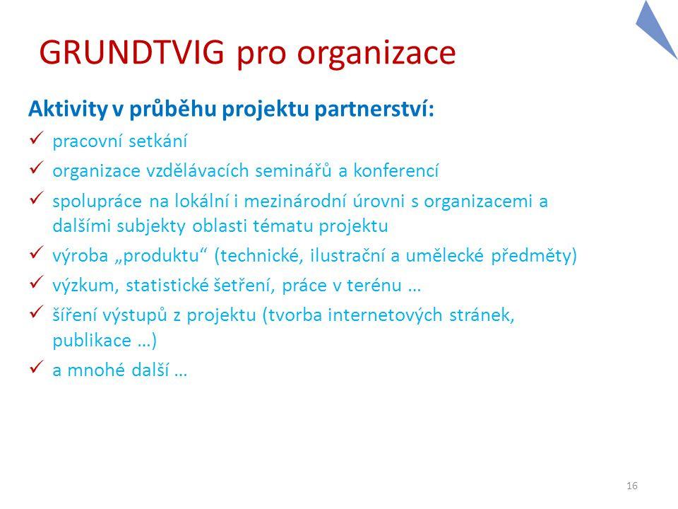 16 GRUNDTVIG pro organizace Aktivity v průběhu projektu partnerství:  pracovní setkání  organizace vzdělávacích seminářů a konferencí  spolupráce n