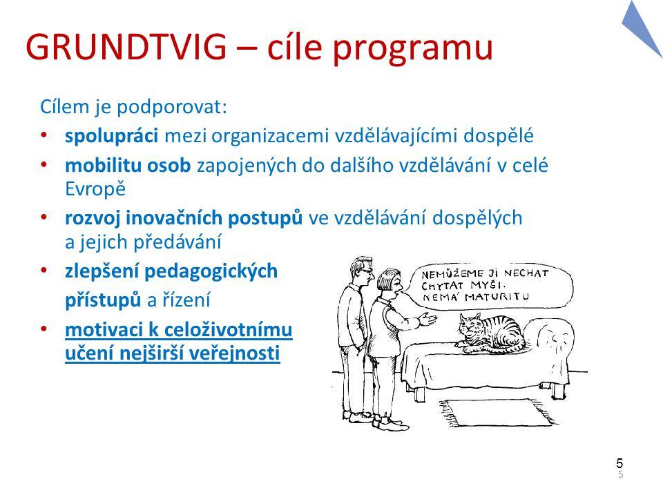 5 5 GRUNDTVIG – cíle programu Cílem je podporovat: • spolupráci mezi organizacemi vzdělávajícími dospělé • mobilitu osob zapojených do dalšího vzděláv
