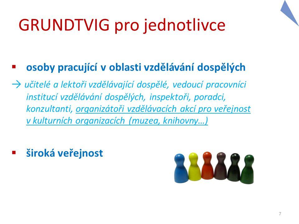 """GRUNDTVIG pro organizace Finanční stránka projektů partnerství: → grant určen na veškeré náklady spojené s realizací projektu (zahraniční setkání, lokální spolupráce, šíření výstupů, tvorba """"produktu , náklady organizace na realizaci …) 18 Počet zahraničních mobilit (minimum) Grant 45 200 EUR 89 600 EUR 1213 200 EUR 2424 000 EUR"""