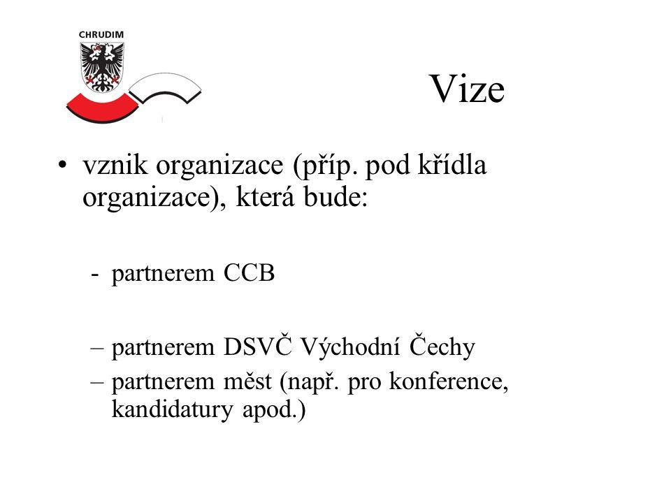 Vize •vznik organizace (příp.
