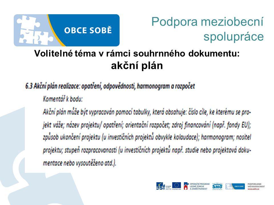 Volitelné téma v rámci souhrnného dokumentu: akční plán Podpora meziobecní spolupráce