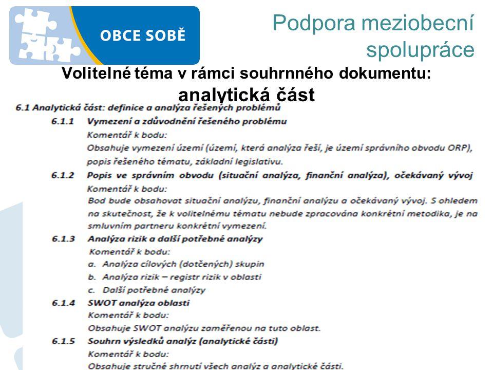 Volitelné téma v rámci souhrnného dokumentu: analytická část Podpora meziobecní spolupráce