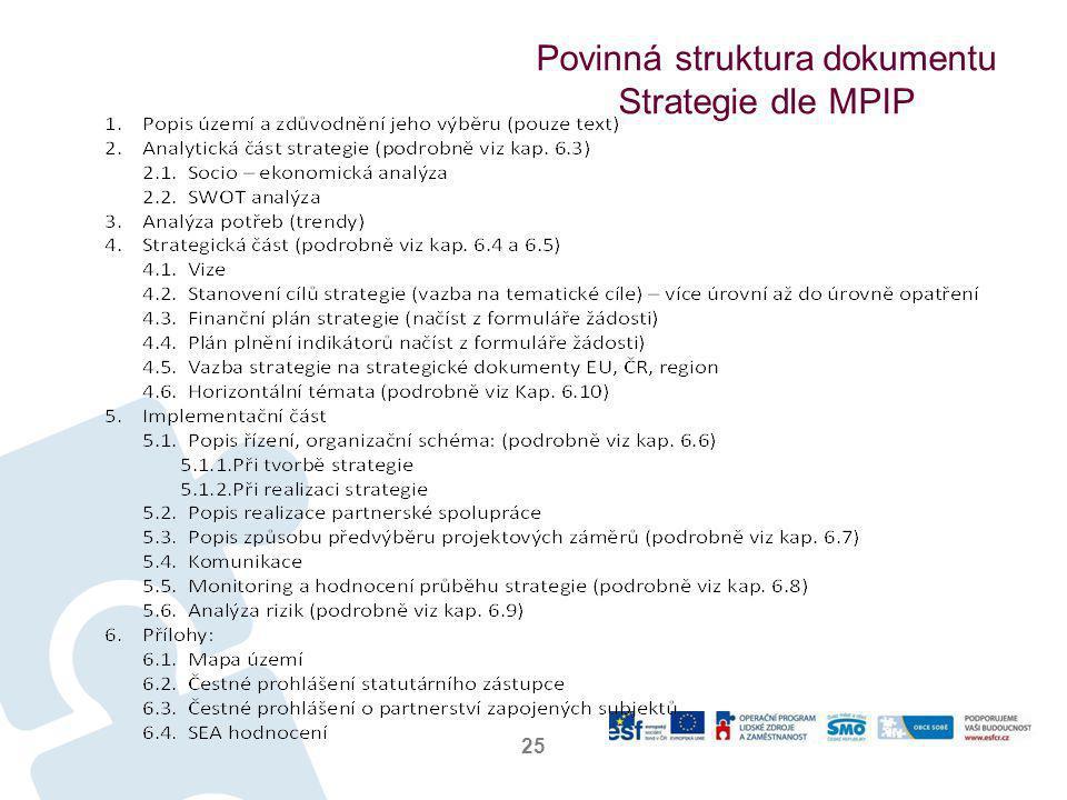 Povinná struktura dokumentu Strategie dle MPIP 25