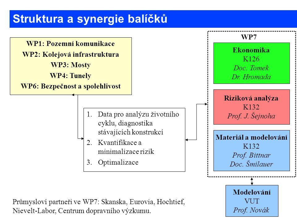 WP1: Pozemní komunikace WP2: Kolejová infrastruktura WP3: Mosty WP4: Tunely WP6: Bezpečnost a spolehlivost Riziková analýza K132 Prof. J. Šejnoha Ekon