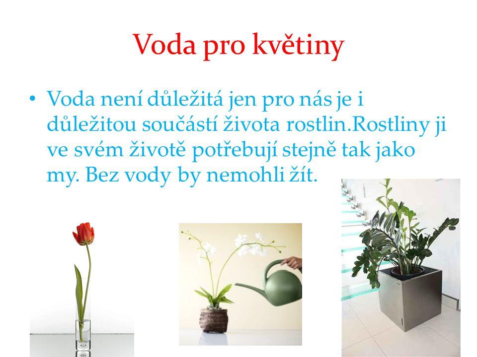 Voda pro květiny • Voda není důležitá jen pro nás je i důležitou součástí života rostlin.Rostliny ji ve svém životě potřebují stejně tak jako my. Bez