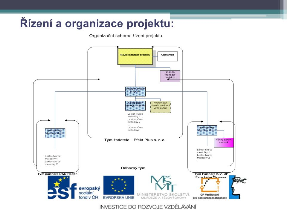 Řízení a organizace projektu: