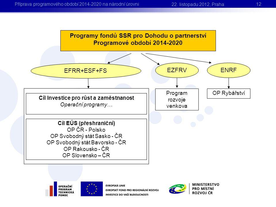 12 Programy fondů SSR pro Dohodu o partnerství Programové období 2014-2020 EFRR+ESF+FS EZFRV ENRF Program rozvoje venkova OP Rybářství Cíl Investice p