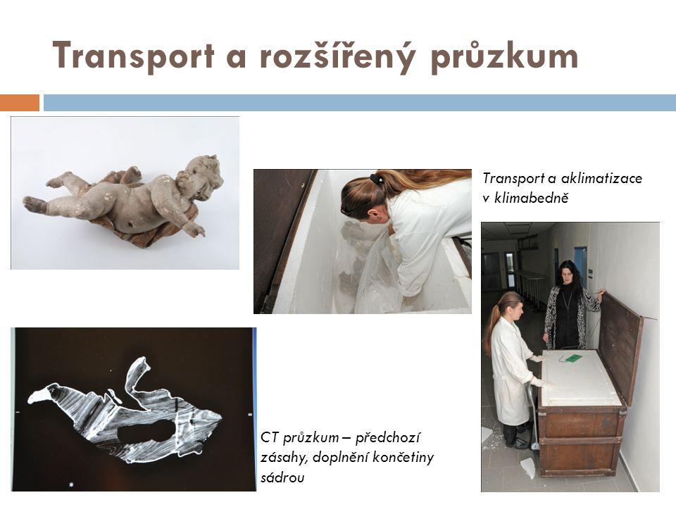 Transport a rozšířený průzkum CT průzkum – předchozí zásahy, doplnění končetiny sádrou Transport a aklimatizace v klimabedně