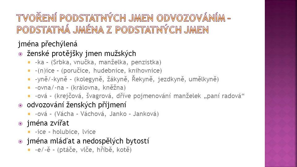 jména přechýlená  ženské protějšky jmen mužských  -ka – (Srbka, vnučka, manželka, penzistka)  -(n)ice – (poručice, hudebnice, knihovnice)  -yně/-k