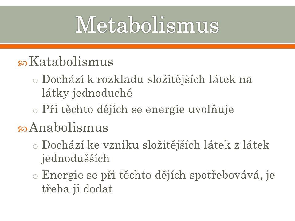  Katabolismus o Dochází k rozkladu složitějších látek na látky jednoduché o Při těchto dějích se energie uvolňuje  Anabolismus o Dochází ke vzniku složitějších látek z látek jednodušších o Energie se při těchto dějích spotřebovává, je třeba ji dodat
