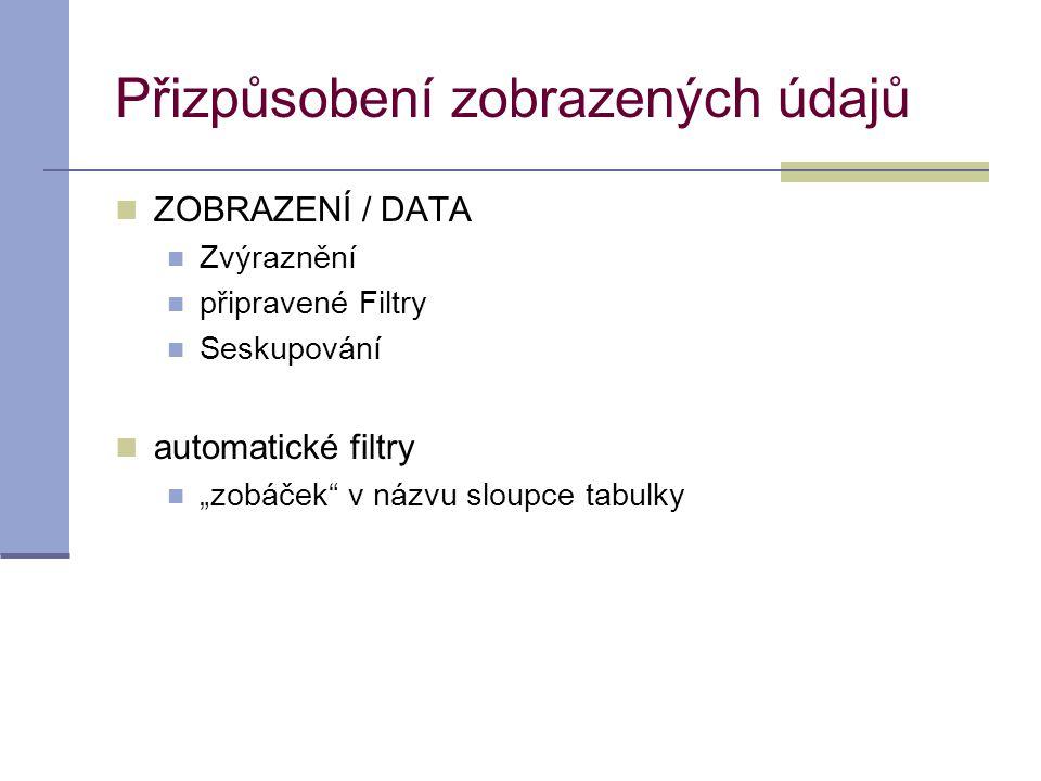 """Přizpůsobení zobrazených údajů  ZOBRAZENÍ / DATA  Zvýraznění  připravené Filtry  Seskupování  automatické filtry  """"zobáček"""" v názvu sloupce tabu"""