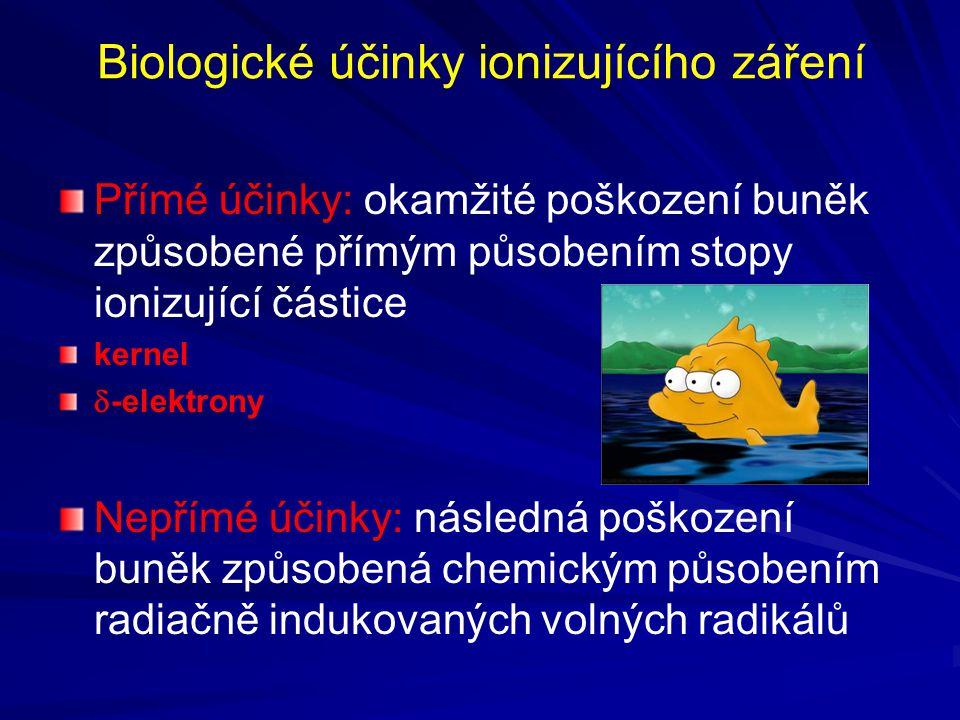Biologické účinky ionizujícího záření Přímé účinky: okamžité poškození buněk způsobené přímým působením stopy ionizující částice kernel  -elektrony Nepřímé účinky: následná poškození buněk způsobená chemickým působením radiačně indukovaných volných radikálů