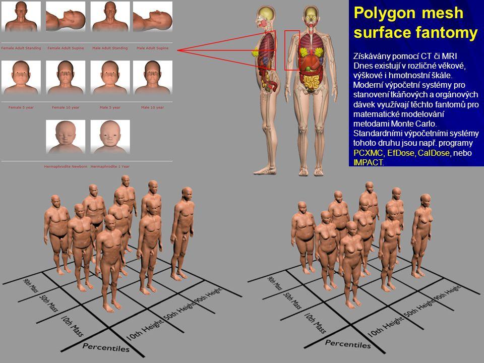 Polygon mesh surface fantomy Získávány pomocí CT či MRI Dnes existují v rozličné věkové, výškové i hmotnostní škále.