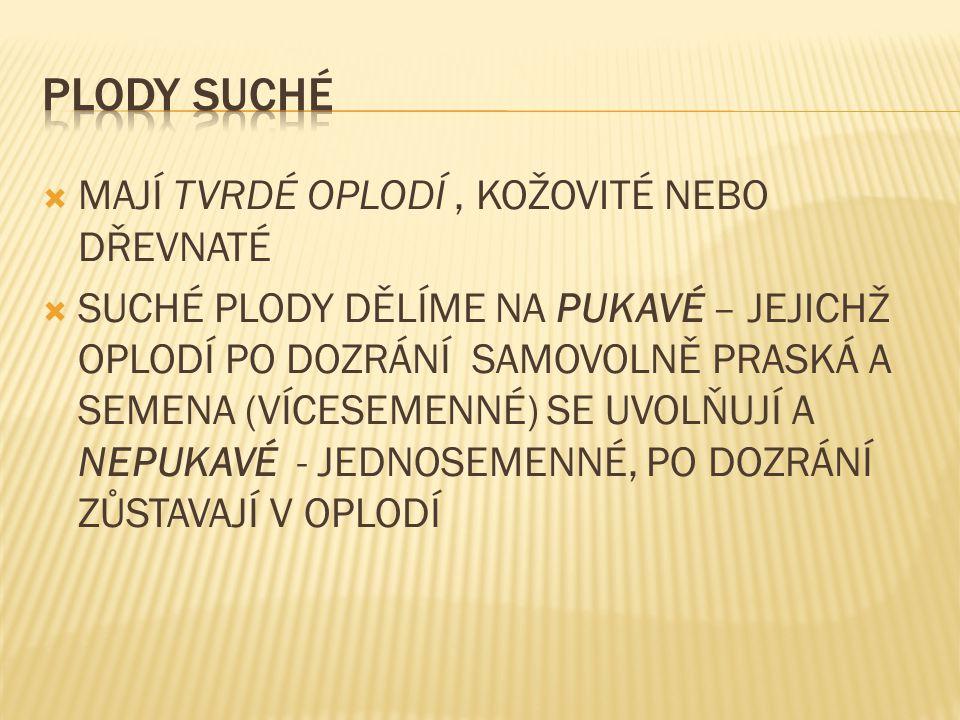  ČABRADOVÁ, V.Přírodopis 7 učebnice pro základní školy a víceletá gymnázia.