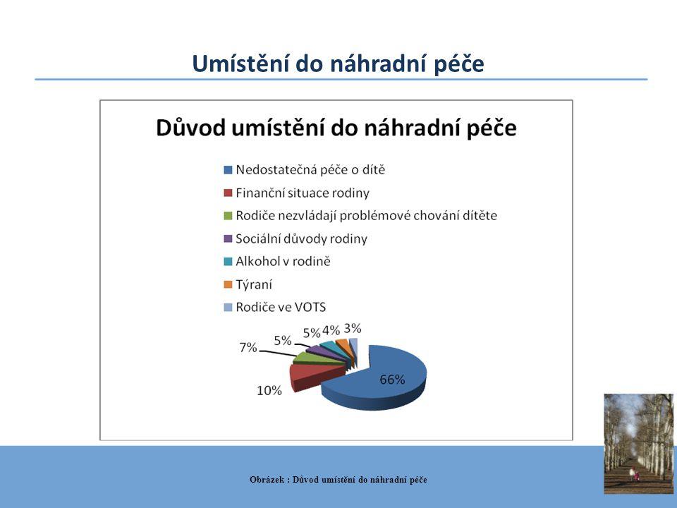 Umístění do náhradní péče Obrázek : Důvod umístění do náhradní péče