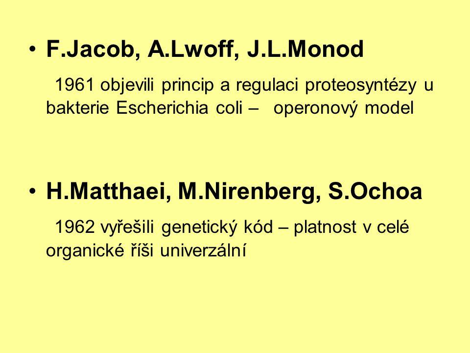 •F.Jacob, A.Lwoff, J.L.Monod 1961 objevili princip a regulaci proteosyntézy u bakterie Escherichia coli – operonový model •H.Matthaei, M.Nirenberg, S.Ochoa 1962 vyřešili genetický kód – platnost v celé organické říši univerzální