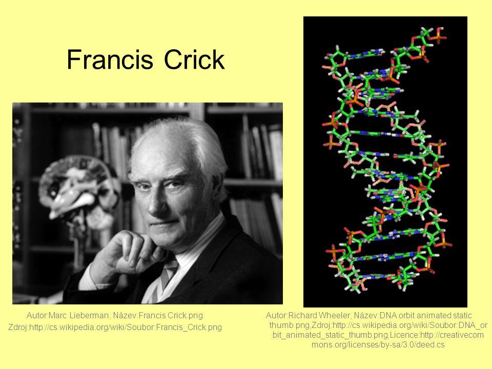 Francis Crick Autor:Marc Lieberman, Název:Francis Crick.png Zdroj:http://cs.wikipedia.org/wiki/Soubor:Francis_Crick.png Autor:Richard Wheeler, Název:DNA orbit animated static thumb.png,Zdroj:http://cs.wikipedia.org/wiki/Soubor:DNA_or bit_animated_static_thumb.png,Licence:http://creativecom mons.org/licenses/by-sa/3.0/deed.cs