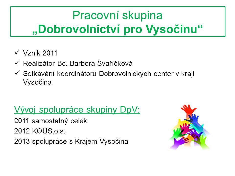 """Pracovní skupina """"Dobrovolnictví pro Vysočinu  Vznik 2011  Realizátor Bc."""