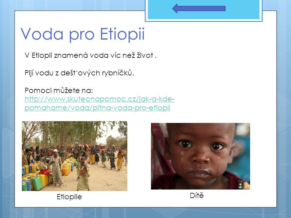 Voda pro Etiopii V Etiopii znamená voda víc než život. Pijí vodu z dešt'ových rybníčků. Pomoci můžete na: http://www.skutecnapomoc.cz/jak-a-kde- pomah