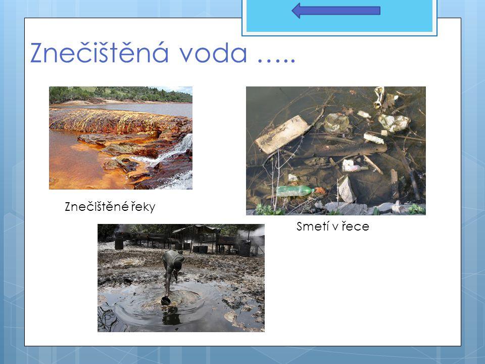 Znečištěná voda ….. Smetí v řece Znečištěné řeky