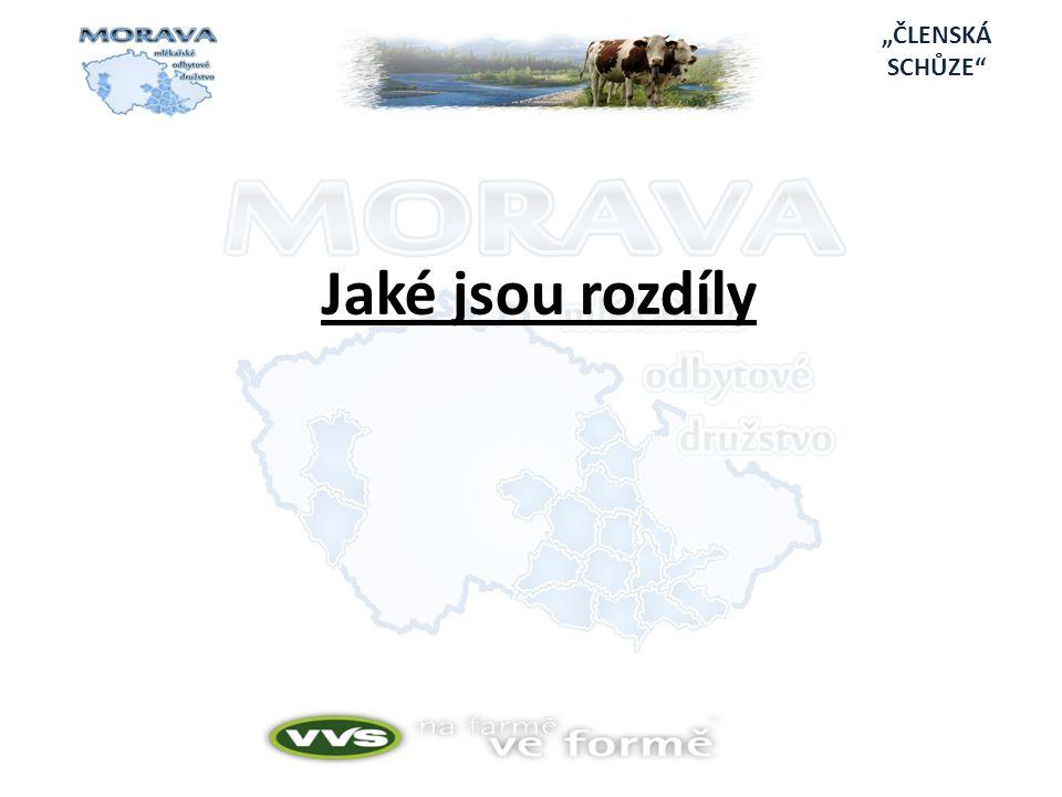 """Projekt je členěn dle jednotlivých druhů činnosti: 1.Odbyt mléka členů Moravy, MOD 2.Obchodní činnost členů a Moravy, MOD 3.Odborné služby pro členy Moravy, MOD 4.Semináře pro členy Moravy, MOD 5.Pilotní projekt na zvýšení rentability výroby mléka 6.Aktivní spolupráce s odborníky či odbornými firmami 7.Komunikace se členy Moravy, MOD """"PILOTNÍ PROJEKT"""