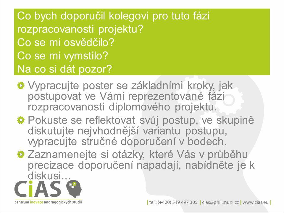 Doporučení k efektivnímu postupu v plánování a realizaci diplomového projektu: Výstupy –postery-shrnutí diskuse.