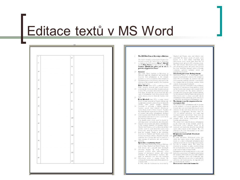 Editace textů v MS Word