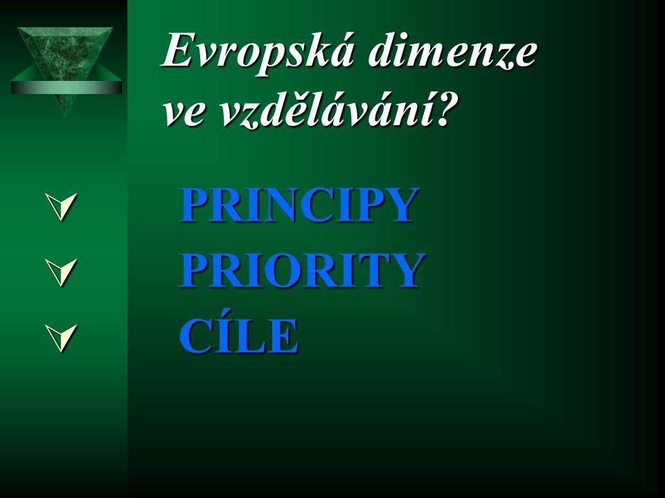 Evropská dimenze ve vzdělávání?  P RINCIPY RIORITY  C ÍLE