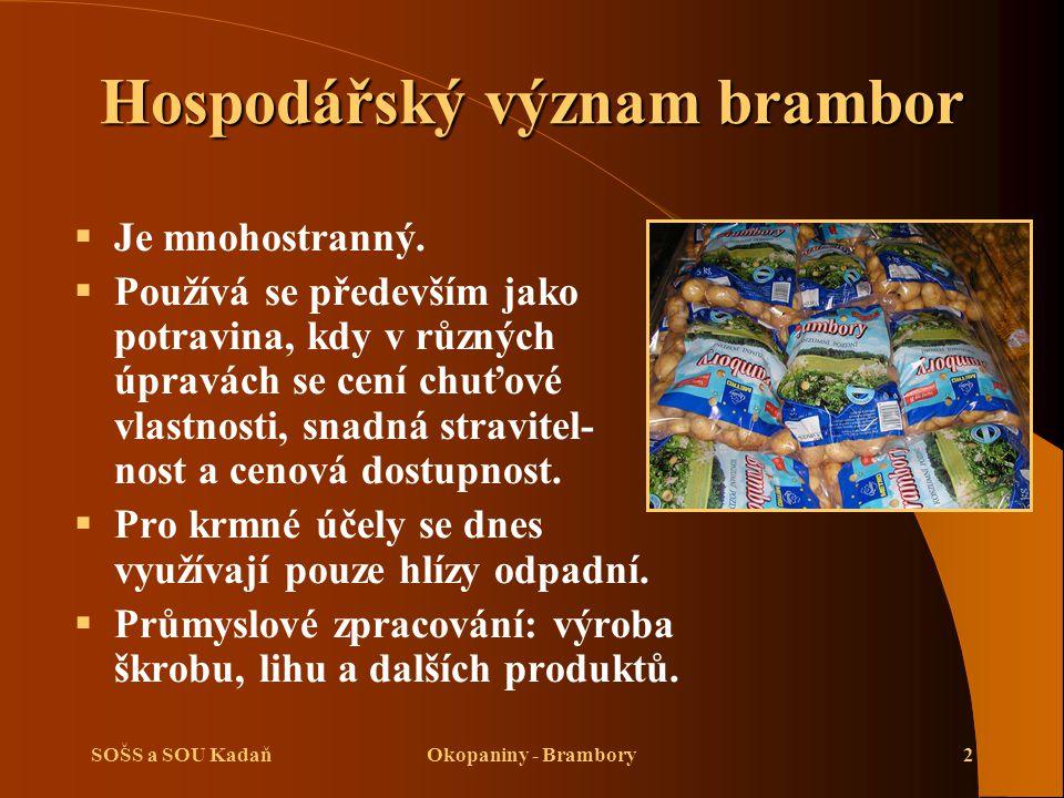 SOŠS a SOU KadaňOkopaniny - Brambory2 Hospodářský význam brambor  Je mnohostranný.