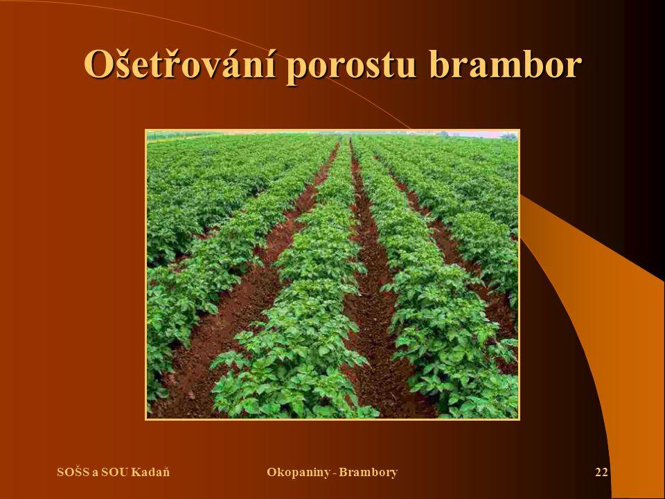 SOŠS a SOU KadaňOkopaniny - Brambory22 Ošetřování porostu brambor