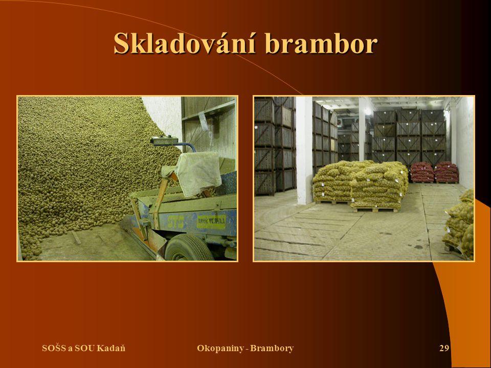 SOŠS a SOU KadaňOkopaniny - Brambory29 Skladování brambor