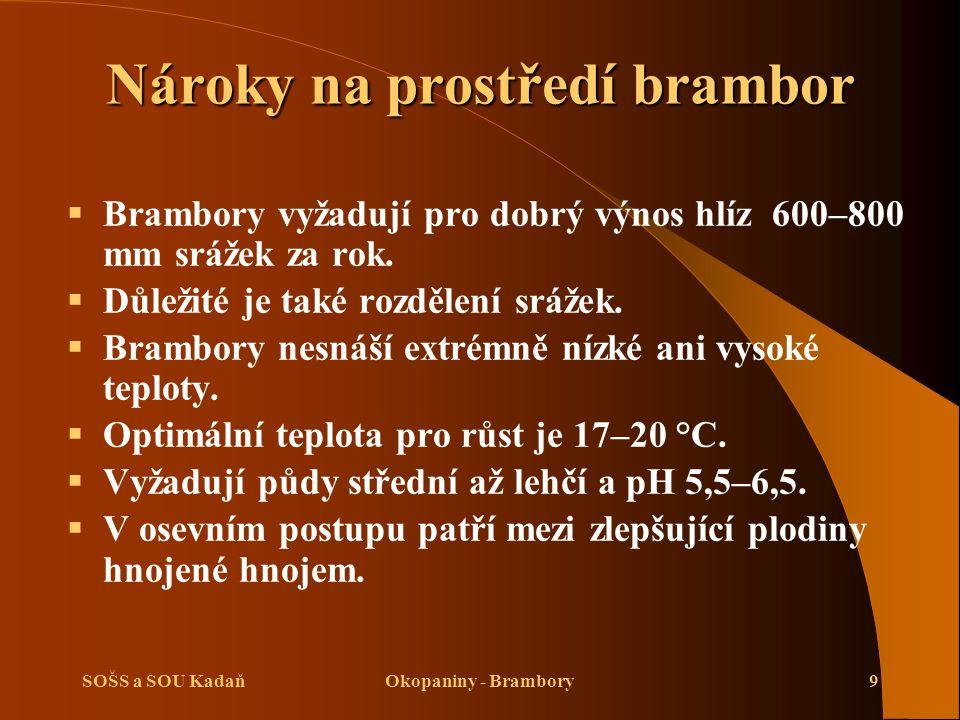 SOŠS a SOU KadaňOkopaniny - Brambory30 Opakování  Vysvětlete, co je to stolon.