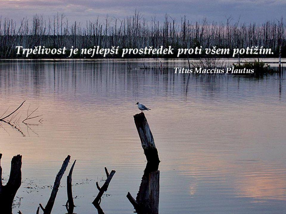 Trpělivost je nejlepší prostředek proti všem potížím. Titus Maccius Plautus