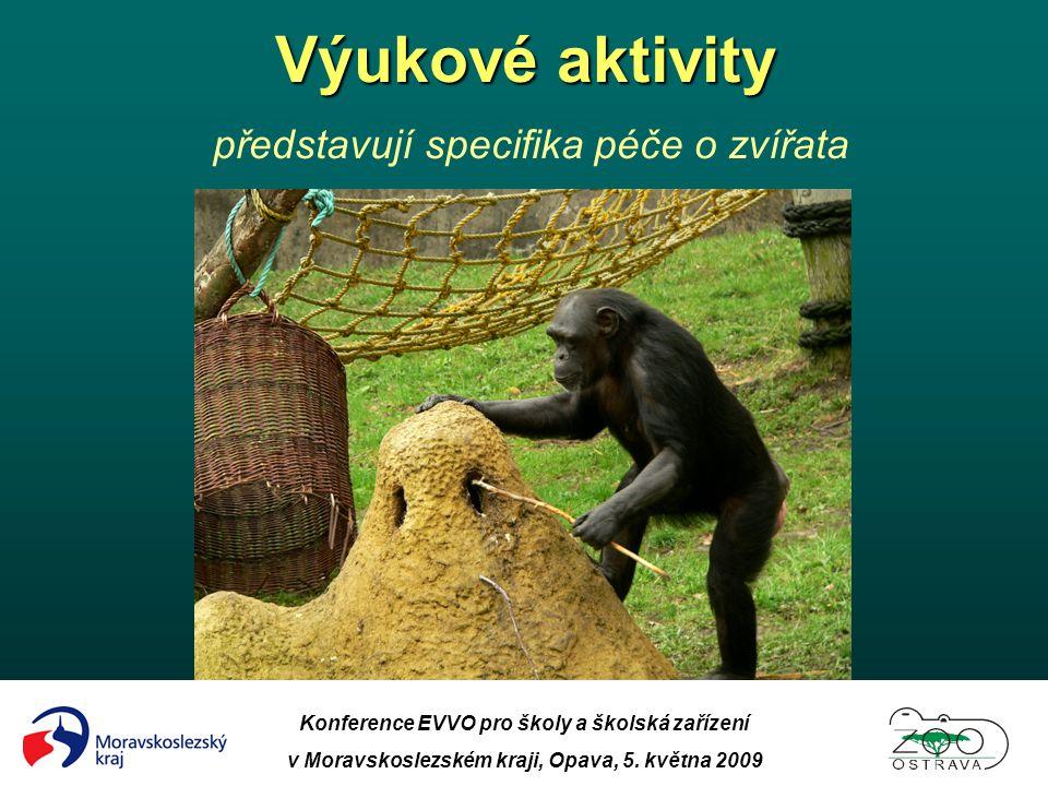 Konference EVVO pro školy a školská zařízení v Moravskoslezském kraji, Opava, 5. května 2009 Výukové aktivity Výukové aktivity představují specifika p