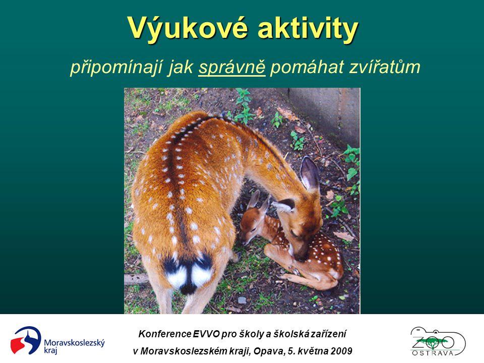 Konference EVVO pro školy a školská zařízení v Moravskoslezském kraji, Opava, 5. května 2009 Výukové aktivity Výukové aktivity připomínají jak správně